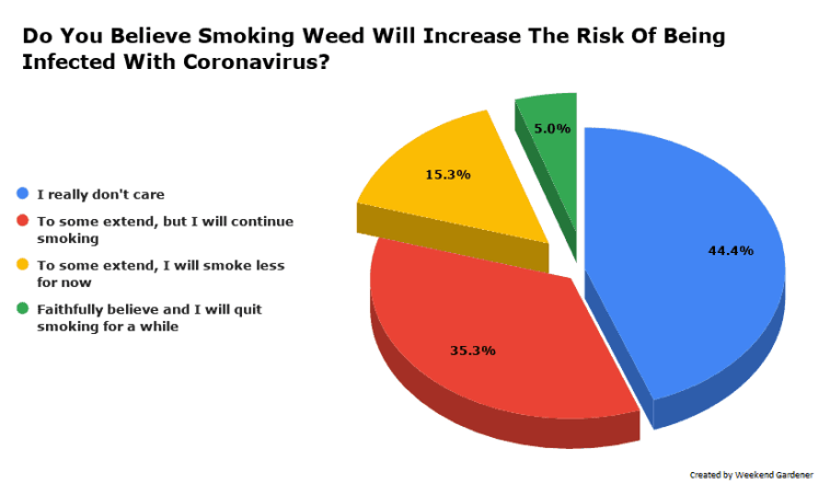 Do You Believe Smoking Weed Will Increase The Risk Of Being Infected With Coronavirus?