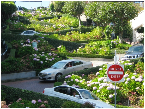 Best 8 Places to Visit in San Francisco   San Francisco Best Places to visit in San Francisco  San Francisco bay area  Lombard  Street