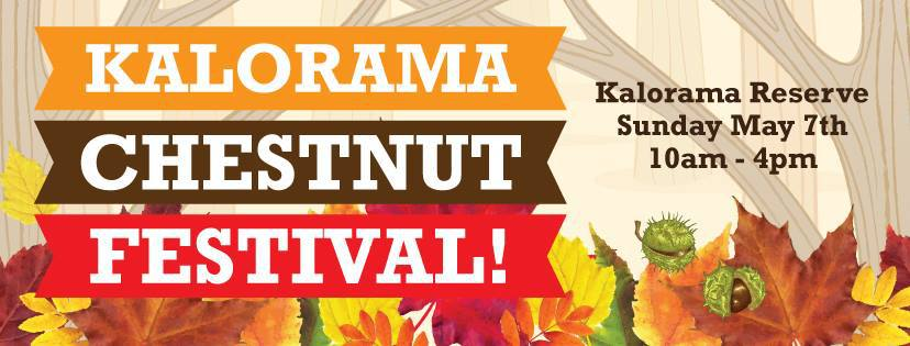Image result for kalorama chestnut festival