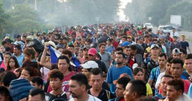 Criminal elements and gang members heading towards the US in the caravans