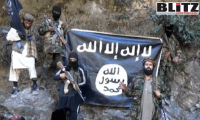 Islamic State, ISIS, Daesh, Afghanistan, Pakistani, ISI, China, Soviet Republics, Saudi Arabia, Al Qaeda