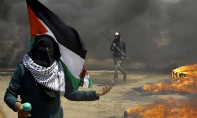 Qatari, Gaza Strip, TikTok, Intifada