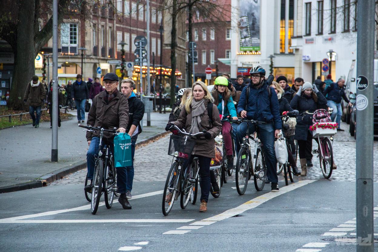 Münster, la ville rhénane aux 600.000 vélos