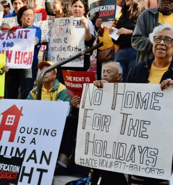Housing Is A Human Right Applauds L.A. City Council's Action on Eviction Crisis
