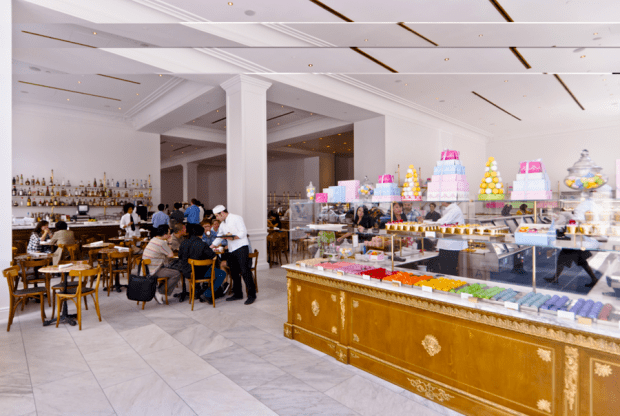Image result for bottega louie