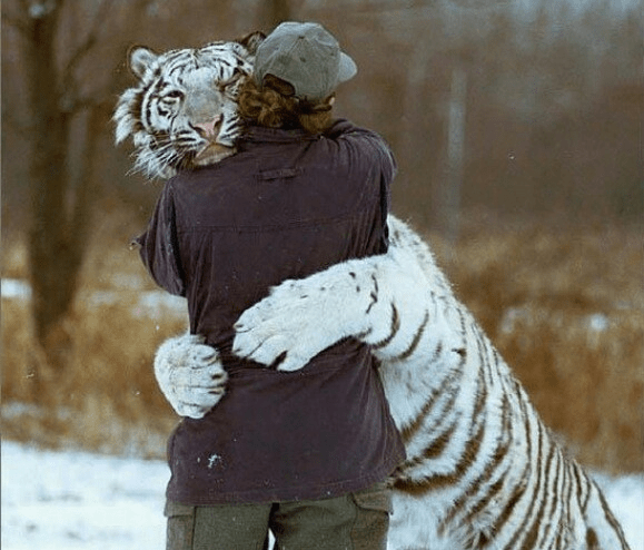 Hugs if you want them.