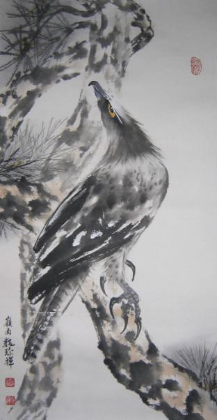 Eagle 鹰