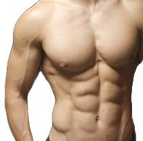 8 pack Abs