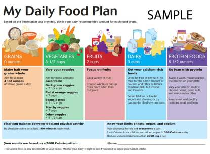 My Daily Food Plan - Healthy Diet Plan