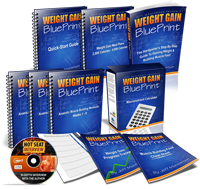 weight gain blueprint program