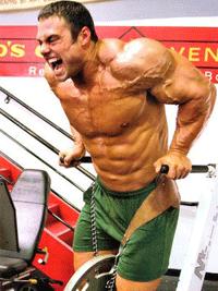 ectomorph workout