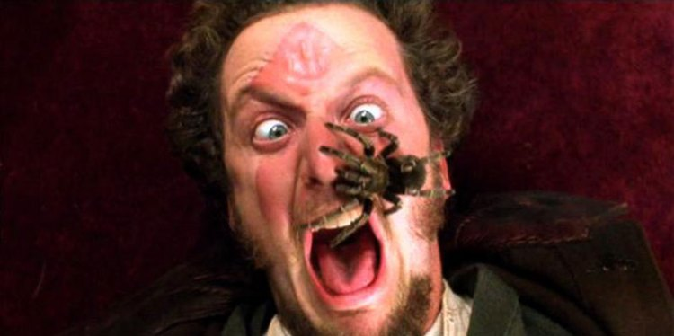 panic-home-alone-spider-face