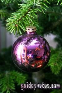 Weihnachtslieder, Adventlieder, Christkind, Schnee, Eduard Ebel, Leise rieselt der Schnee