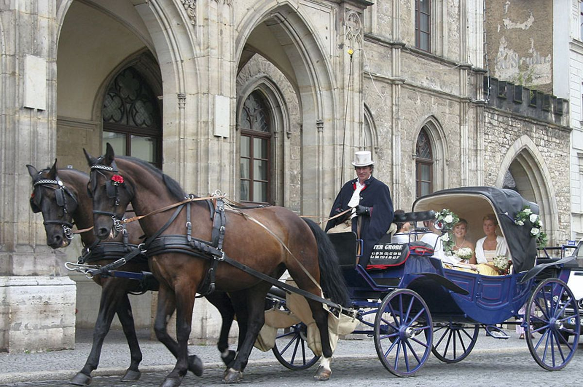Romantische Hochzeitskutschen Mieten Mietmeile De