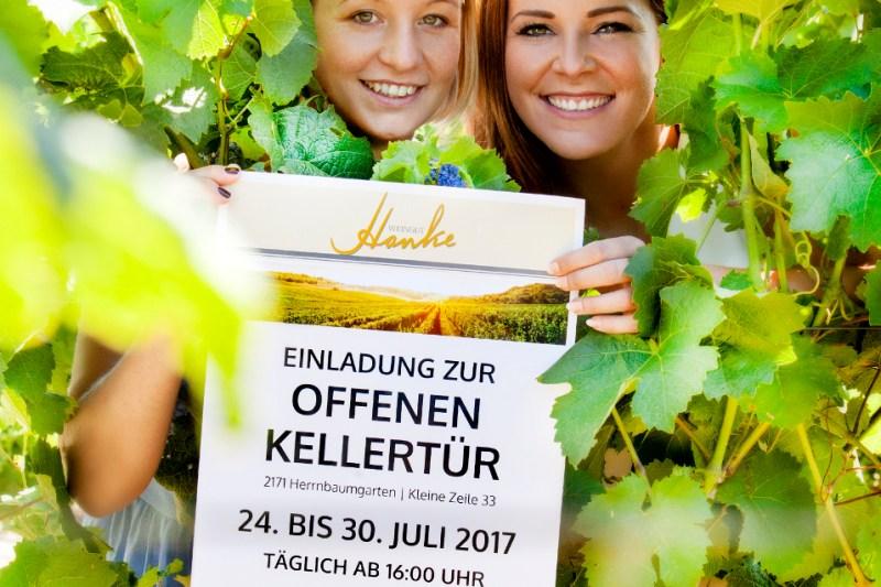 Offene Kellertür Weingut Hanke