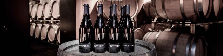 Pinot R(h)ein - Pinot Noir