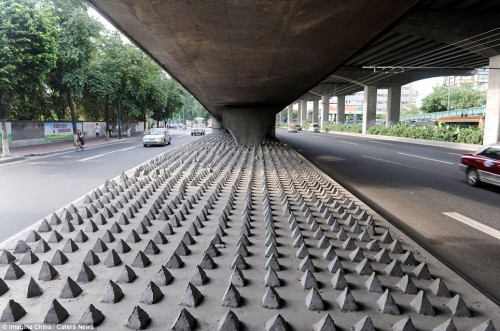 Chinas Painful Solution to Homeless Living Under Bridges picture