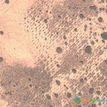 Weird Marks in the Desert, Sahel Reserve, Burkina Faso
