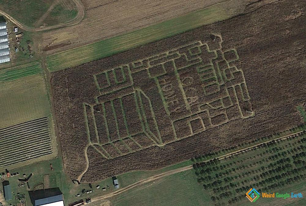 Farm Field Art