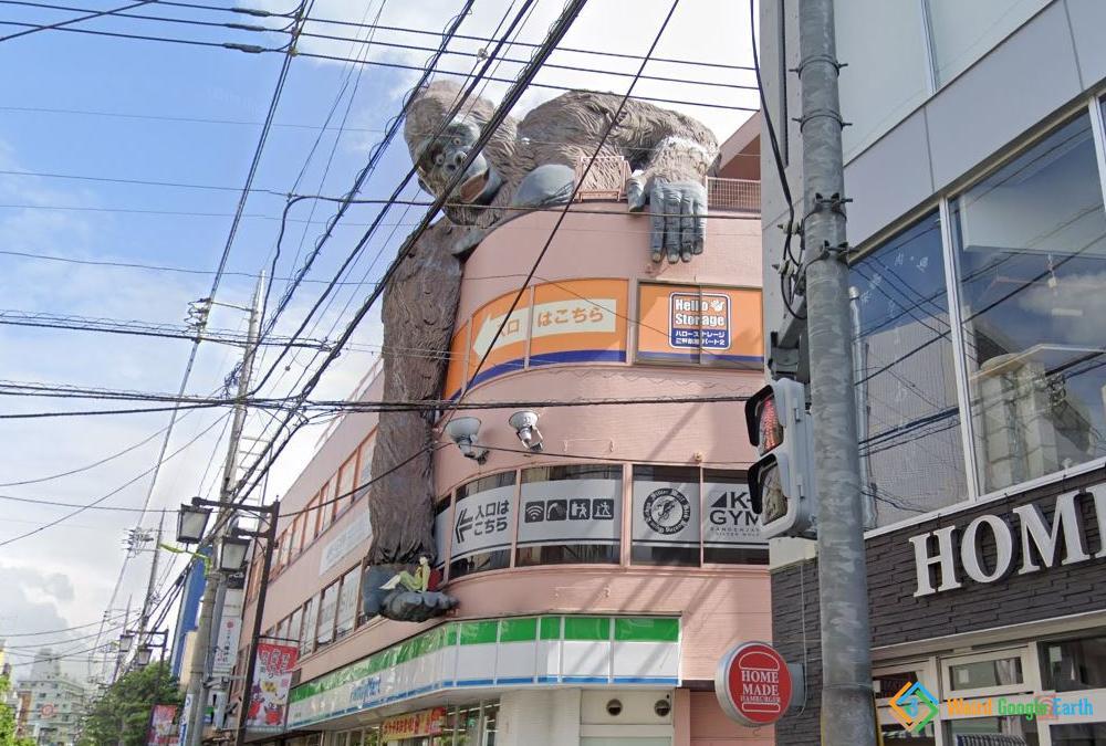 Gorilla Building, Tokyo, Japan