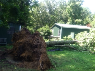 Storm damage5