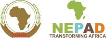 Logo_nepad