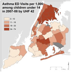 Maps created by Grant Pezeshki and Jessie L. Carr, University of Pittsburgh and NYC Department of Health and Mental Hygiene
