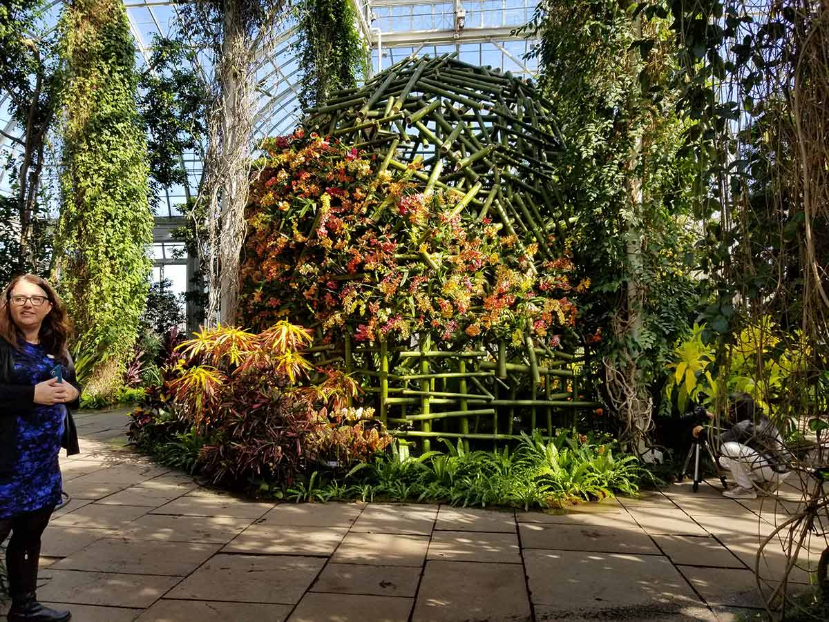 The Orchid Show at The New York Botanical Garden Is Their Most ...