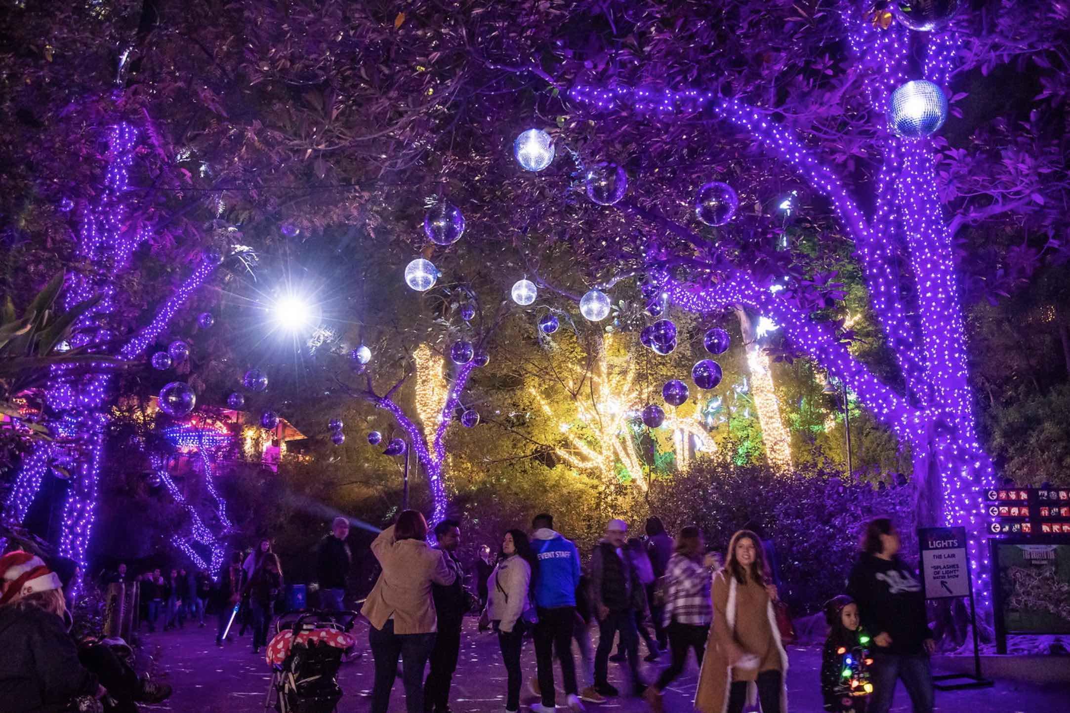 La Zoo Lights Tickets Door