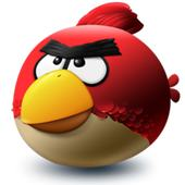 Angry Bird, upset that people are pirating his software