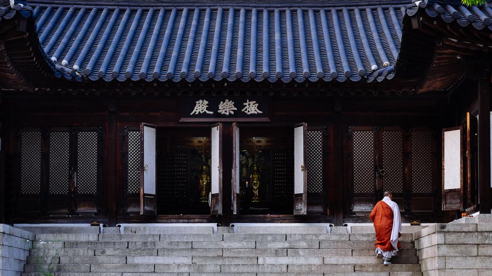 Seoul Photographer - Fuji Review