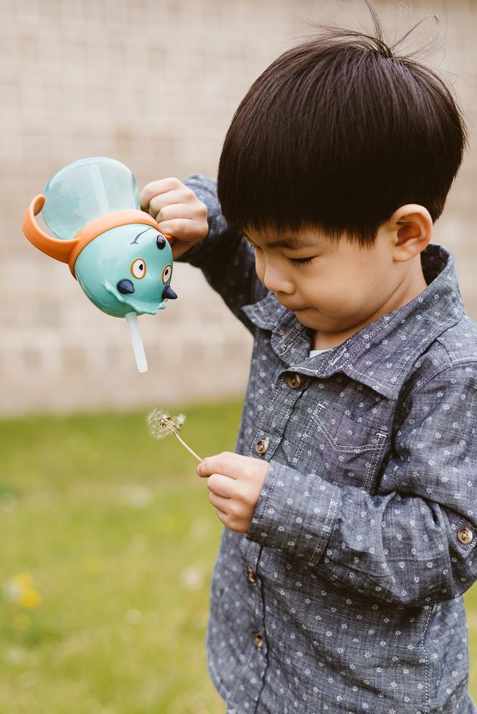 Family Photography in Korea