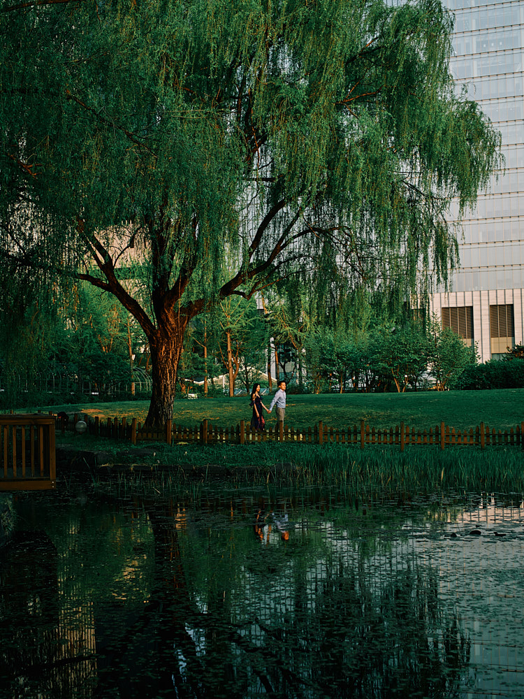 Yeouido park offers a mix of nature and the urban environment for a couple photography session
