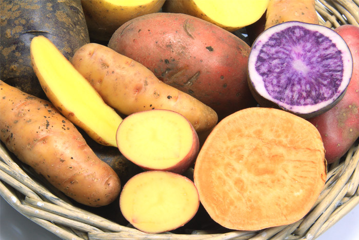 sweet-potato-great-for-weight-loss