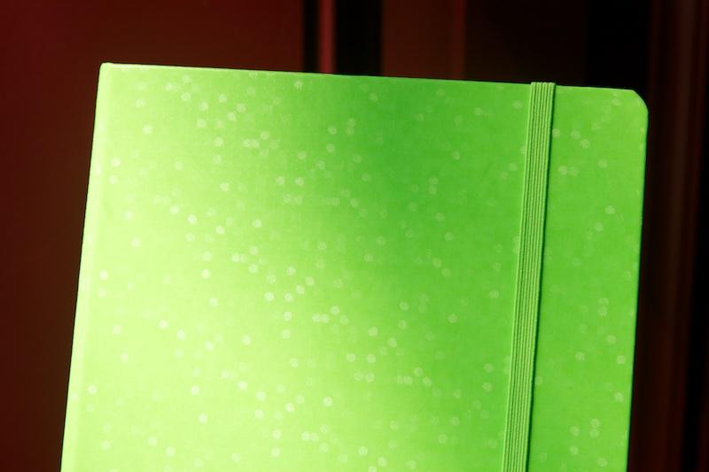 Review Leuchtturm 1917 Neon Green Notebook The Well