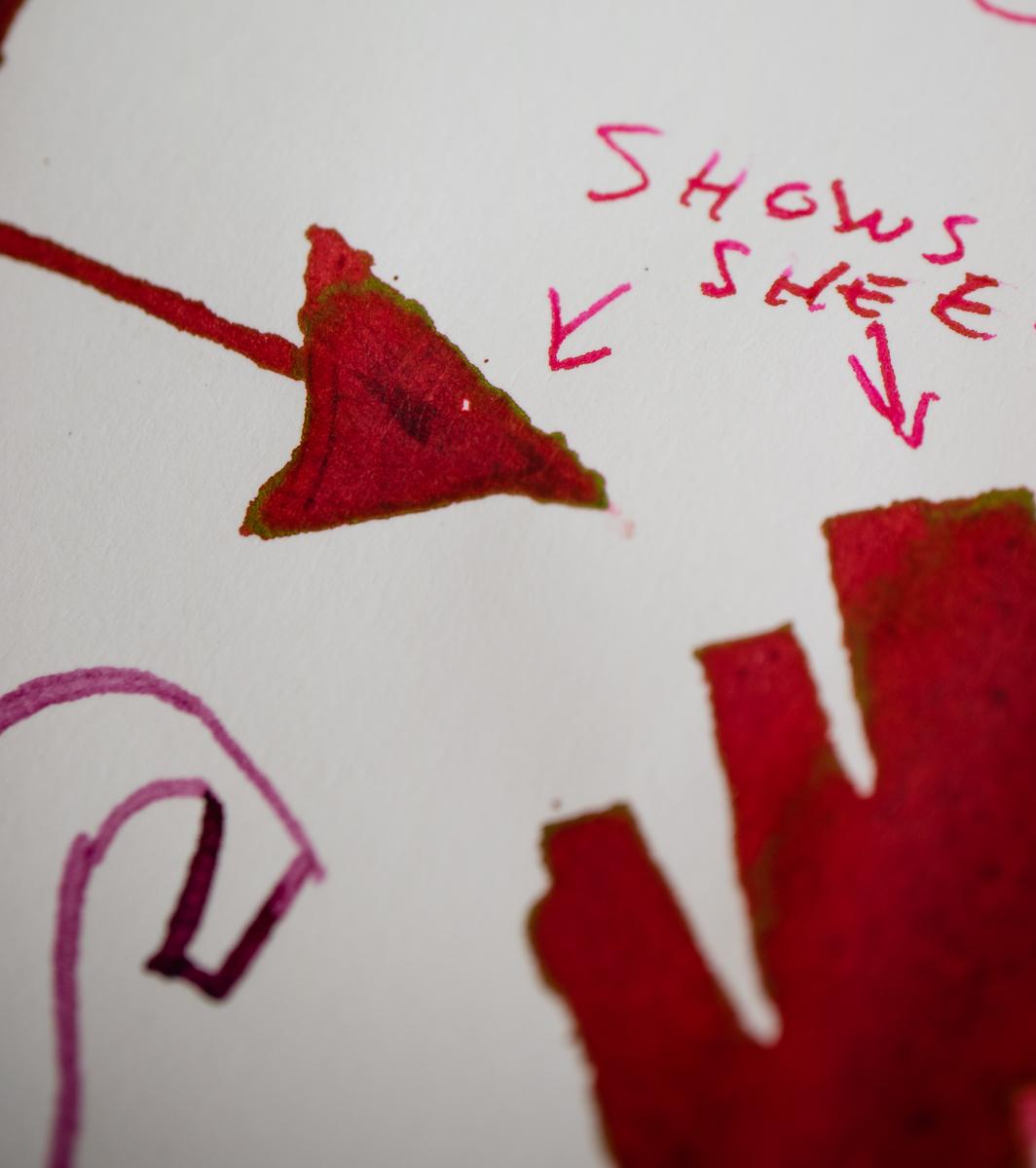 Life Typewriting paper writing test close-up