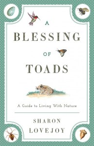 blessing of toads