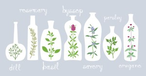 Aromatic Plants in Bottles