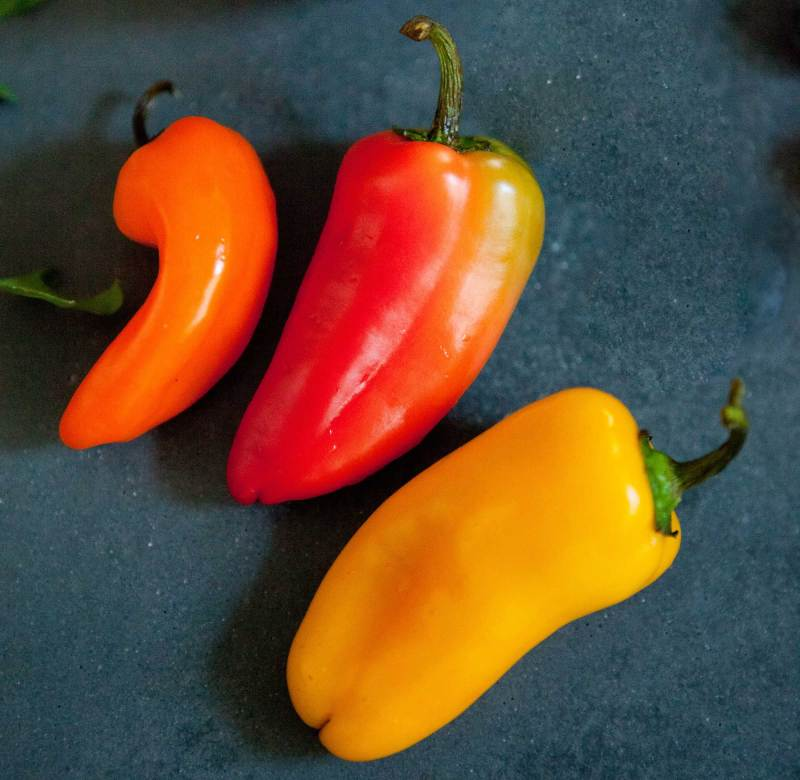 WellCrafted-Ingredients-Hot-Pepper-001-square-blog