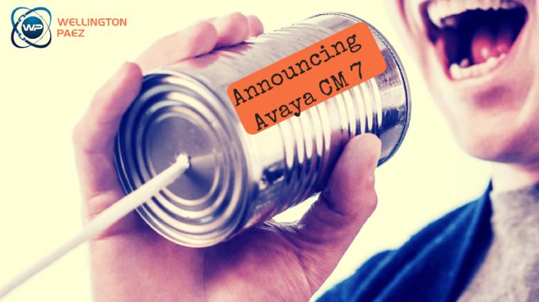 Avaya CM 7 Quick Overview - Wellington Paez