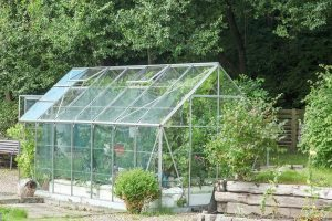 glass-for-greenhouses-dans-glass-e1470095766825
