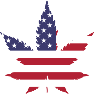 Where to Buy Cannabis Oil Online