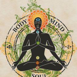 Mind body soul grfic