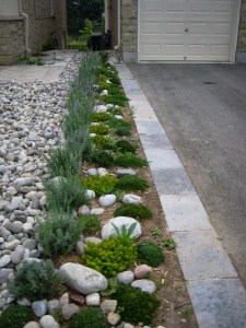 landscape-Oakville driveway stone border with flower bed
