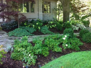 landscape-Oakville flower bed with stone work