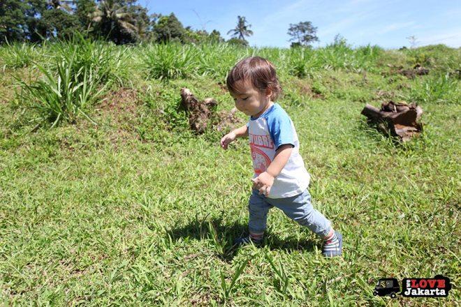 Parkland  Kuntum Bogor_Quantum Nursery Bogor_Kuntum Farmfield Bogor_Tasha May_welovejakarta_we love jakarta_jakarta with kids_kids in indonesia_what to do with kids on the weekend in jakarta