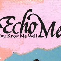 Echo Me - You Know Me Well