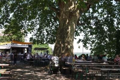 Alter Zoll Bonn schöner Biergarten