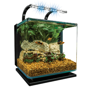 best freshwater aquarium set
