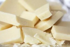 weiße Schokolade tödlich für Hunde